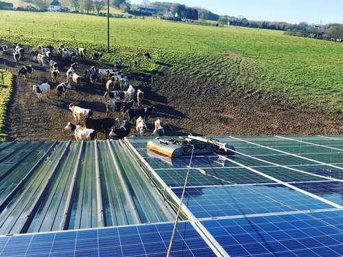 Nettoyage de 700m2 de panneaux photovoltaïques - Saint-Jean-Brévelay