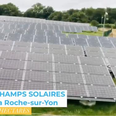 Nettoyage de champs solaires à La Roche-sur-Yon
