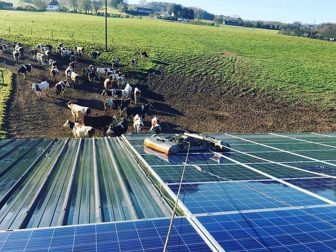 Nettoyage de 700m2 de panneaux photovoltaïques - Saint-Jean-Brévelay 0